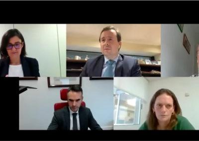 7 Seminario Web con Fernando Guldrís, Mireia Solá y Carlos Franco. «Innovación y competitividad de la empresa. Instrumentos de apoyo técnico y financiero»